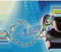 GMO-Detection